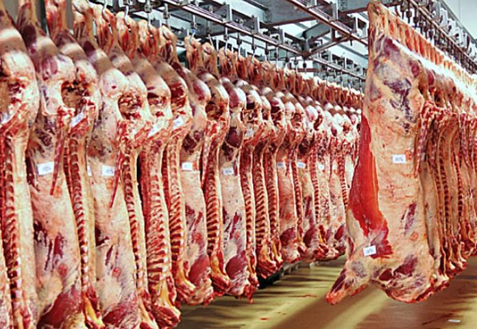 Establecen el procedimiento para la presentación de las Declaraciones Juradas de los Exportadores de Carne